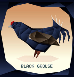 Origami black grouse vector