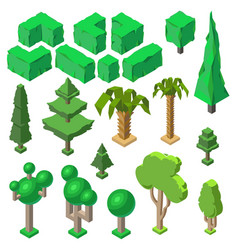 3d isometric plants trees bushes palms vector image