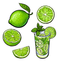 whole half quarter lime and glass of lemonade vector image vector image