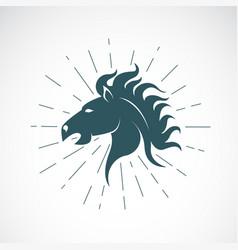 horse head on white background animal horse vector image