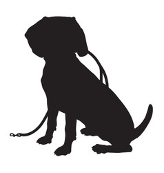 Beagle silhouette leash vector