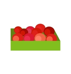 Box with Fruits Concept vector image