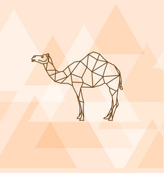 Camel polygon polygon on orange background vector