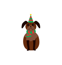 cute brown pug stands in a christmas striped hat vector image