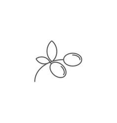 Olives branch plant icon concept isolated vector