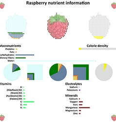 Raspberry nutrient information vector
