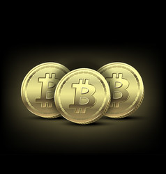 three gold bitcoin on dark background vector image