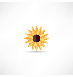 sunflower icon vector image