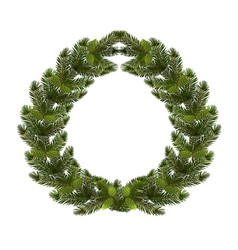 christmas new year a green branch of spruce in vector image
