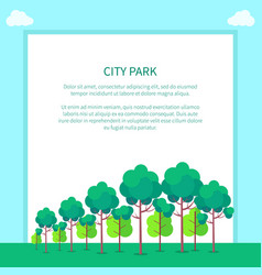city park with trees different shapes and sizes vector image