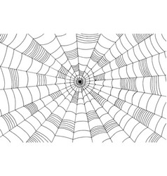 doodle spiderweb background pattern texture of vector image