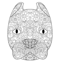 good American Pit Bull Terrier head coloring vector image