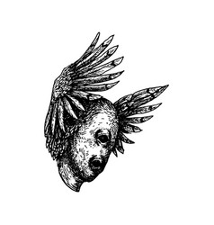 Mutant with wings and feathers vector