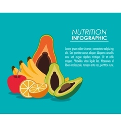 Nutrition infographic food icon vector