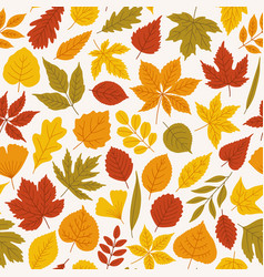 Seamless autumn pattern with different bright vector