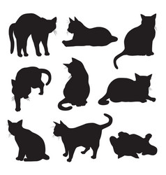 set cats silhouettes vector image