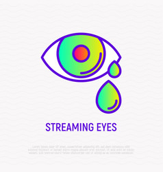 Streaming eye thin line icon vector