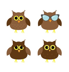 Cute owl set Big eyes sunglasses Icons on white vector image