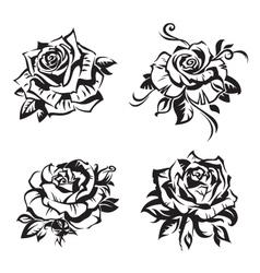black rose set vector image