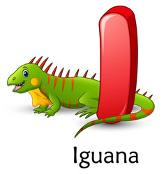 Letter i is for iguana cartoon alphabet vector