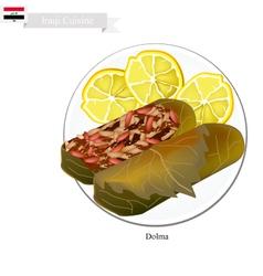 Dolma or Iraqi Stuffed Meat in Grape Leaves vector