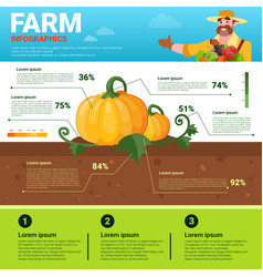 farming infographics eco friendly organic natural vector image