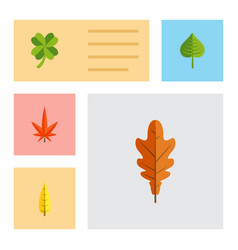 Flat icon foliage set of maple hickory linden vector