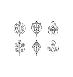 geometrical leaves set monochrome polygonal vector image