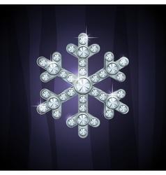 jewel snow silver vector image
