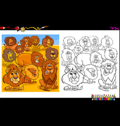 lions animal characters group coloring book vector image
