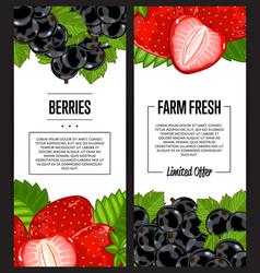 organic farm fresh berry flyer set vector image