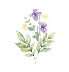 watercolor bouquet with wildflower vector image