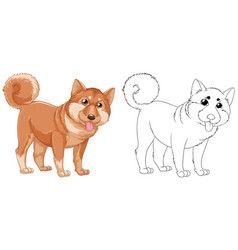 Animal outline for shiba dog vector