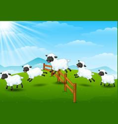 cute cartoon sheep collecti vector image