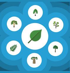 Flat icon ecology set baobab timber linden vector