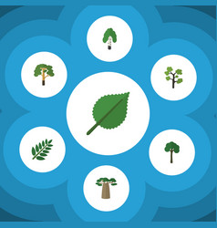 Flat icon ecology set of baobab timber linden vector