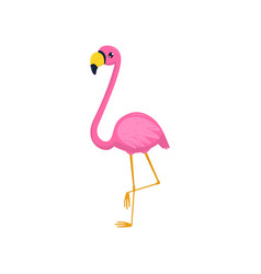 flat icon of flamingo tropical bird with vector image