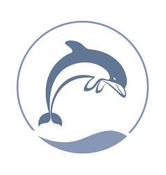 Jump dolphin vector