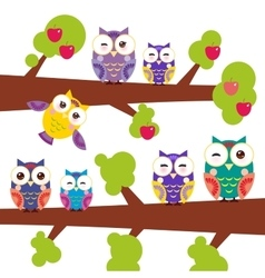 set bright colorful owls on the branch of apple vector image