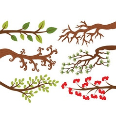 Tree Branches vector