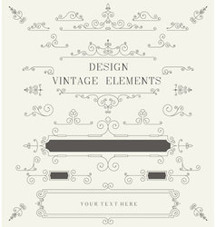 Vintage design template borders retro elements vector image vector image