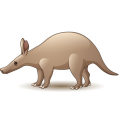 cartoon aardvark isolated on white background vector image