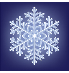 Icy snowflake vector