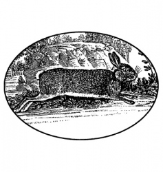 running rabbit vector image