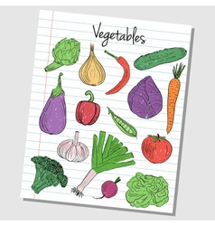 vegetables doodles lined paper colored vector image