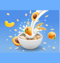 Oat flakes with apricot advertising design vector
