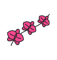 Orchid branch color icon vector