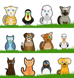 pet animals vector image