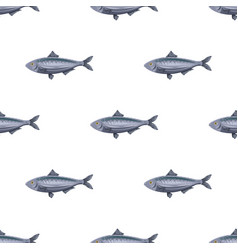 seamless pattern flat herring fish isolated on vector image