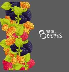 sweet berries background vector image
